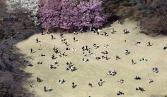 Shinjuku İmparatorluk Parkı 27 Mart'tan itibaren geçici olarak kapalı