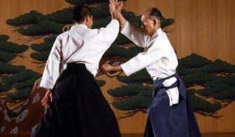 Japonya'da dövüş sanatları